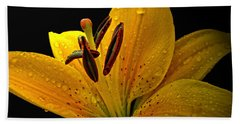 Beach Towel featuring the photograph Dew On The Daylily by Debbie Portwood