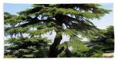 Do-00511 Cedar Forest Beach Sheet
