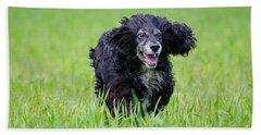 Dog Running On The Green Field Beach Towel
