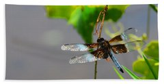 Beach Sheet featuring the photograph Dragonfly by Cindy Manero