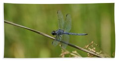 Beach Sheet featuring the photograph Dragonfly by Heidi Poulin