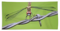 Beach Towel featuring the photograph Dragonfly On Barbed Wire by Penny Meyers
