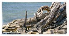 Driftwood II Beach Sheet by Patricia Griffin Brett