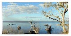Driftwood Landscape 1 Beach Sheet