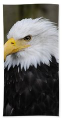 Eagle In Ketchikan Alaska 1371 Beach Towel by Michael Bessler