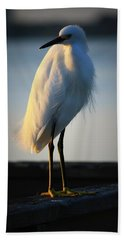 Egret Beach Sheet