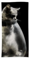 Beach Towel featuring the photograph El Kitty by Jessica Shelton