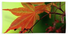 Beach Towel featuring the photograph Fall Leaves by Michelle Joseph-Long