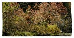Autumn Spectacular Beach Sheet by Diane Schuster