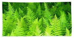 Ferns Galore Filtered Beach Towel