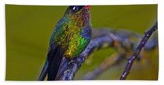 Fiery-throated Hummingbird Beach Towel