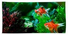 Beach Towel featuring the photograph Fish Tank by Matt Malloy