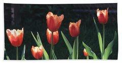 Flared Red Yellow Tulips Beach Towel by Tom Wurl