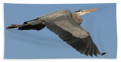 Flight Of The Great Blue Heron Beach Towel by Myrna Bradshaw