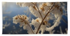 Frosty Dry Wood Aster Beach Towel by Kent Lorentzen