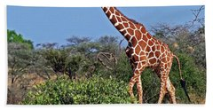 Giraffe Against Blue Sky Beach Towel