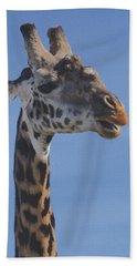 Giraffe Headshot Beach Towel by Tom Wurl