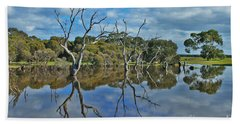 Beach Towel featuring the photograph Glass Lake by Stephen Mitchell
