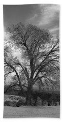 Grand Canyon Life Tree Beach Sheet