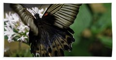 Great Mormon Butterfly Beach Towel