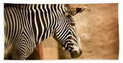 Grevys Zebra Beach Towel