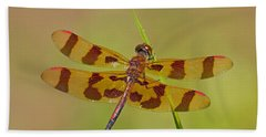 Halloween Pennant Beach Sheet