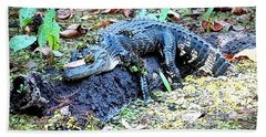 Hard Day In The Swamp - Digital Art Beach Towel