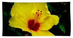 Beach Towel featuring the photograph Hawaiian Yellow Hibiscus by Athena Mckinzie