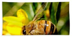 Beach Towel featuring the photograph Honey Bee by Chriss Pagani