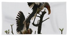 Hornbill Courtship Beach Sheet by Bruce J Robinson