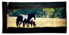 Beach Towel featuring the photograph Horse Photography by Peggy Franz