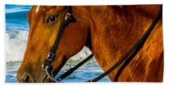 Horse Portrait  Beach Towel by Shannon Harrington