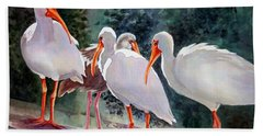 Ibis - Youngster Among Us. Beach Towel by Roxanne Tobaison