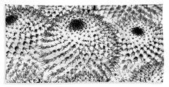 Beach Towel featuring the photograph Invisible Cactus by Rebecca Margraf