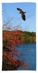 Beach Towel featuring the photograph Juvenile And Fishermen by Randall Branham