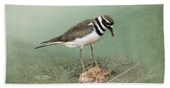 Killdeer And Worm Beach Towel