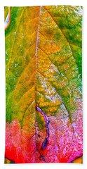 Leaf 2 Beach Sheet by Bill Owen