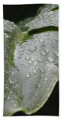 Beach Towel featuring the photograph Leafy Greens by Tiffany Erdman