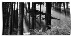 Beach Towel featuring the photograph Light Through The Trees by Don Schwartz