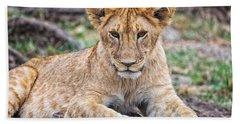 Beach Towel featuring the photograph Lion Cub by Perla Copernik
