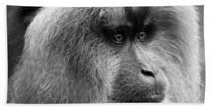 Lion-tailed Macaque Beach Towel