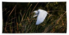 Little Blue Heron Before The Change To Blue Beach Towel by Steven Sparks