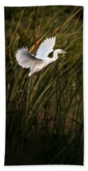 Little Blue Heron On Approach Beach Towel by Steven Sparks