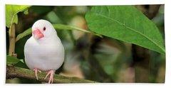 Little White Bird Beach Towel by Rosalie Scanlon