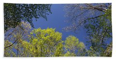 Beach Towel featuring the photograph Looking Up In Spring by Daniel Reed