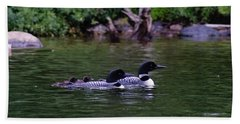 Loons With Twins 2 Beach Sheet by Steven Clipperton