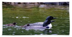Loons With Twins 3 Beach Sheet by Steven Clipperton