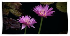 Lotus Water Lilies Beach Sheet