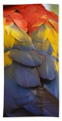 Macaw Parrot Plumes Beach Towel