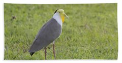 Masked Lapwing Beach Towel